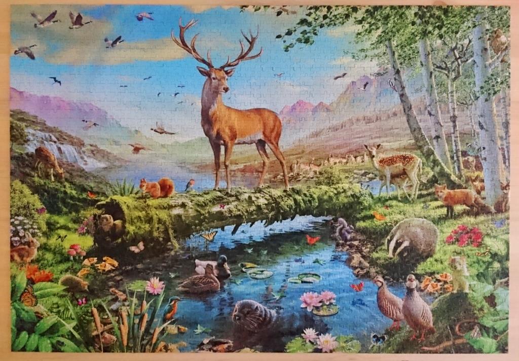 Puzzle 2018-19 Jumbo – Wildlife Splendour | Cronicas Puzzleras